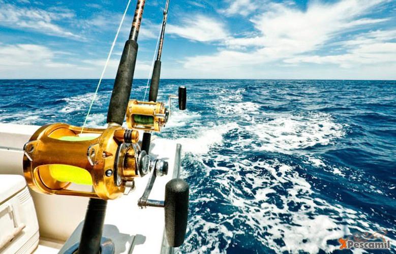 Pesca mil