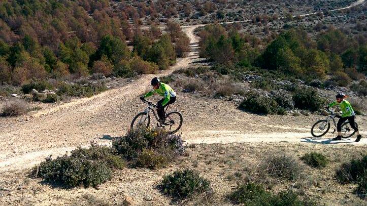Ciclos Aragon
